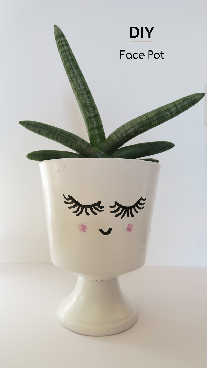 diy-facepot